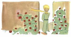 Im Rosengarten entdeckt der kleine Prinz, dass seine Rose nicht einzigartig ist in der Welt.