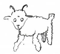 Der kleine Prinz – Zeichnung vom 2. Schaf, der Widder