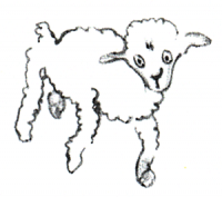 Der kleine Prinz – Zeichnung vom 3. Schaf, das alte Schaf